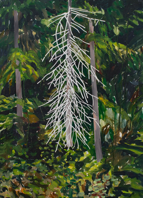 , 'The Dead Tree,' 2012, Peter Robertson Gallery