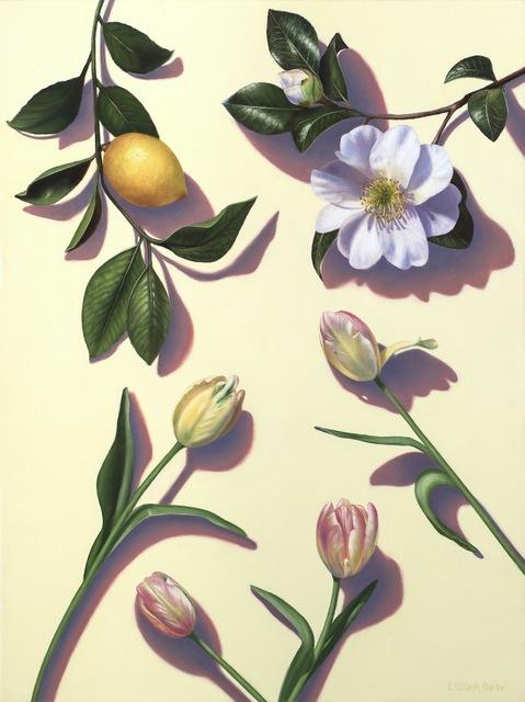 Elizabeth Barlow, 'Beauty Above Me, Beauty Below Me ', 2019, Andra Norris Gallery
