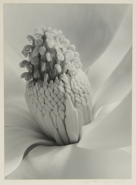 , 'Tower of Jewels,' 1925, Richard Moore Photographs