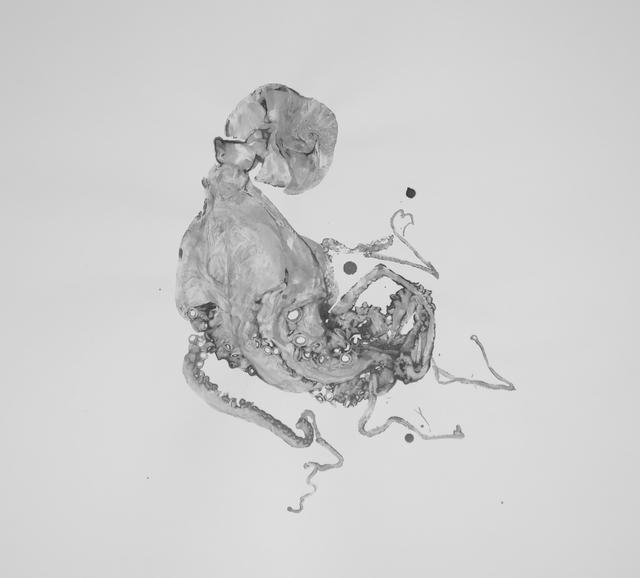 , 'Octopus 9 ,' 2016, La Patinoire Royale / Galerie Valerie Bach