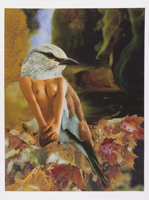 , 'Bluebird of Happiness in the Fall,' 2016, Gavlak