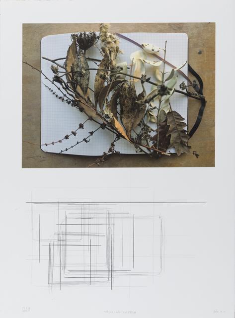 """, '""""notas para o outono"""" (col. I/V) #8/8,' 2018, Galeria Miguel Nabinho"""