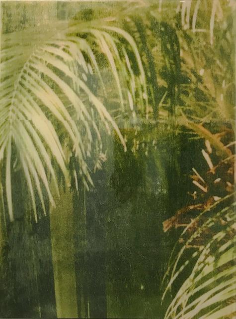 Ernesto Cánovas, 'Botanic XXXI', 2017, Ambacher Contemporary