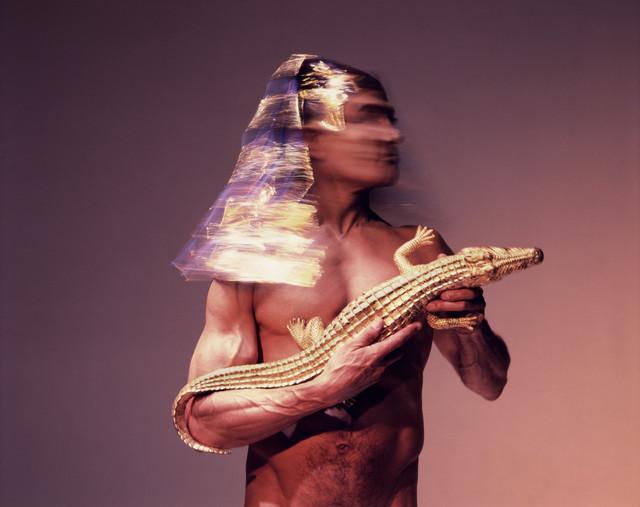 , 'El Gold #5,' 2010, Galeria Lume