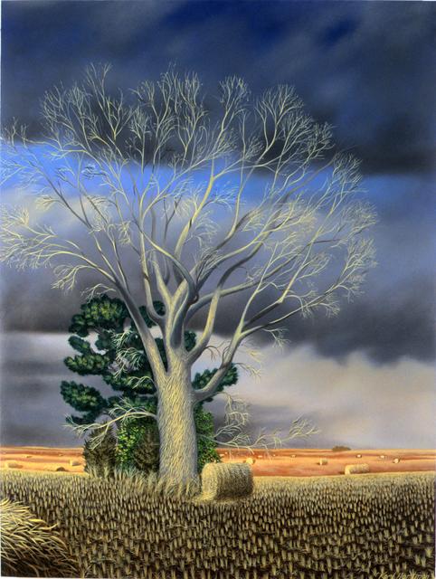 Karl Hartman, 'Bare Cottonwood', 2011, Painting, Oil on wood panel, Garvey | Simon