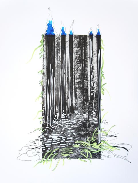 Suchitra Mattai, 'Redwoods', 2019, k contemporary
