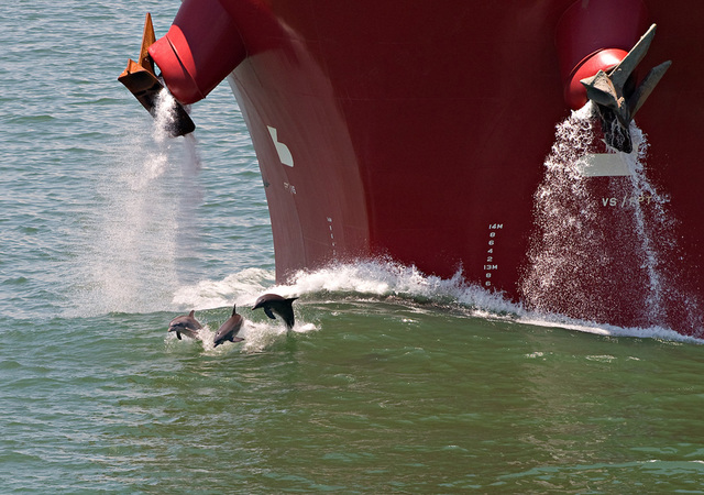 """Lou Vest, '""""Three Dolphins and Ship""""', ca. 1998, Foto Relevance"""