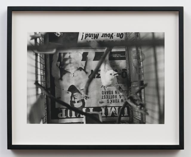 , 'Spirit,' 1989-1991, Hal Bromm