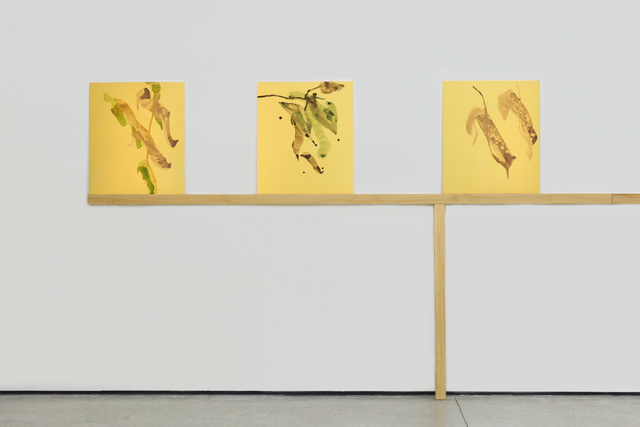 Gabriel Orozco, 'Suisai XXXIX', 2016, White Cube