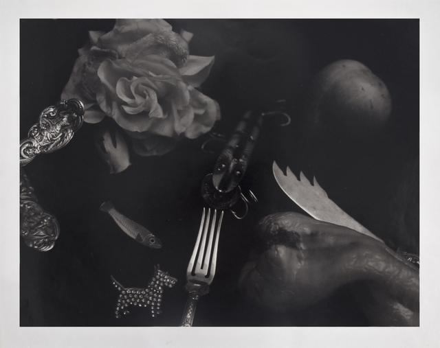 Jan Groover, 'Untitled', 1983, RxArt Benefit Auction