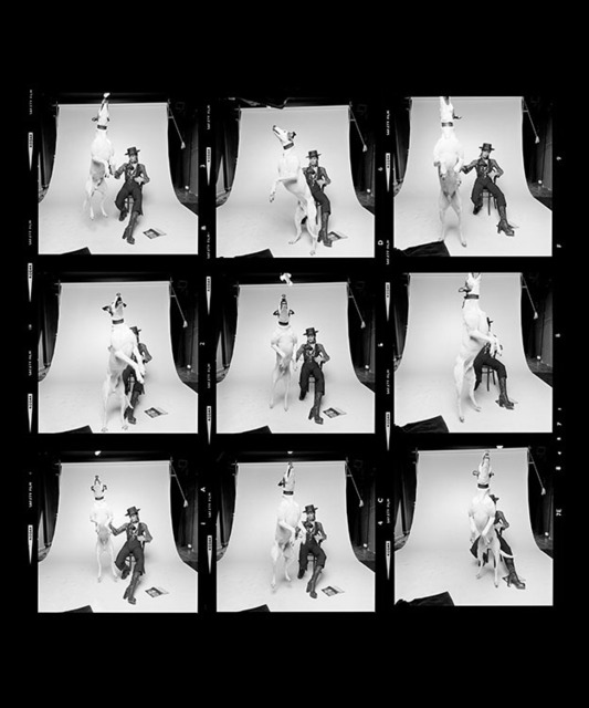 , 'David Bowie Diamond Dogs contact sheet,' 1974, Ransom Art