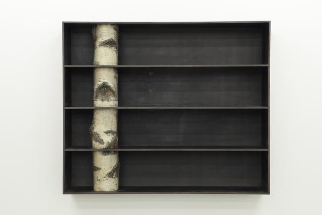 , 'Tree 2,' 2010, Friedman Benda