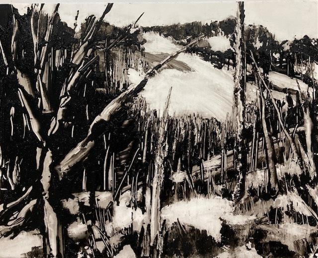Jane Wolf, 'Nature Paradox Yellowstone', 2021, Painting, Acrylic, The Galleries at Salmagundi