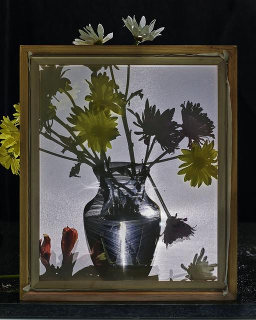 , 'Flowers for Lisa #19,' 2016, Edwynn Houk Gallery
