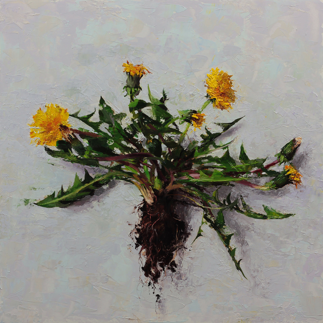 , 'Uproot,' 2016, Gallery 1261