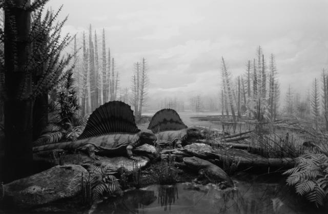 , 'Permian Land,' 1992, Fraenkel Gallery