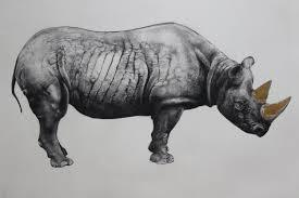 Rhinoceros State II by Tammy Mackay.  £420 unframed