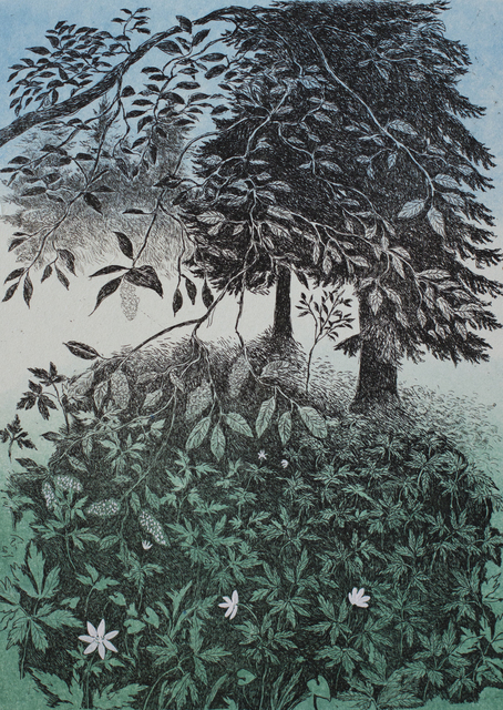 , 'Mother's Day flowers,' 2014, Himmelblau Printmaking Finland