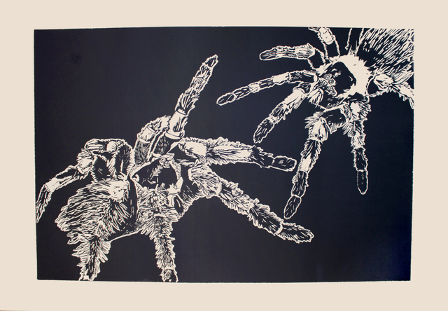 , 'Total Other (Spider),' 2016, form & concept