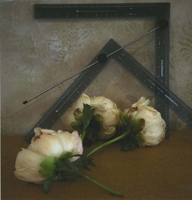 , 'Katonah,' 2014, Deborah Bell Photographs