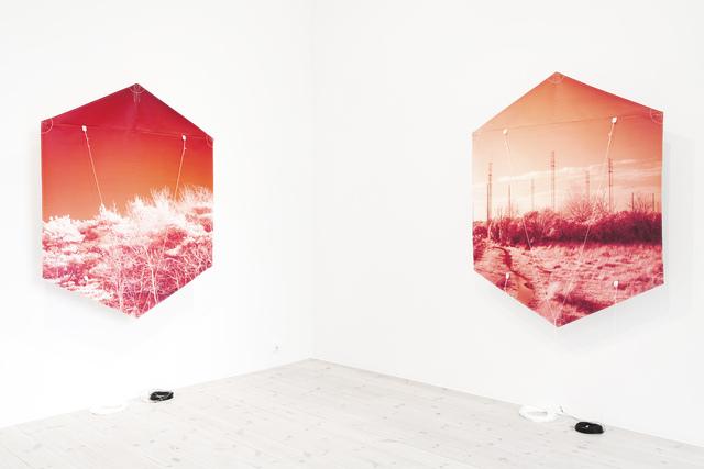 , 'Kites,' 2016, Mona Bismarck American Center