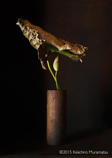 Keiichirô Muramatsu, ' A Stage Lotus 5-3', 2015, Galerie Marie-Robin