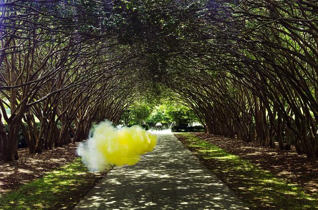 , 'Herbage,' 2014, Galleri Urbane