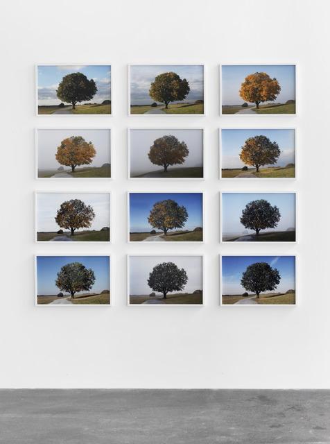 , 'Antiherbst (Anti-Autumn),' 2013, Grieder Contemporary