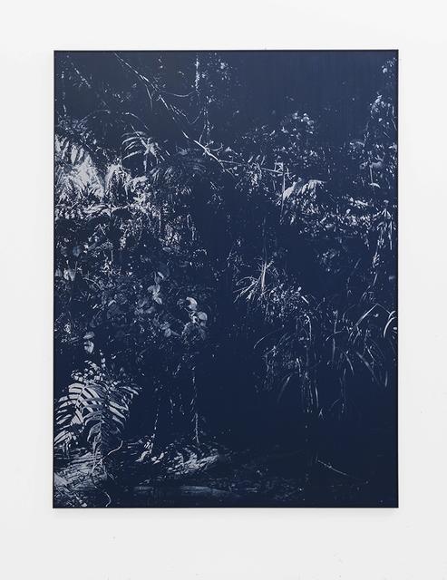 , 'Late Shadow Riverbank,' 2018, SMAC