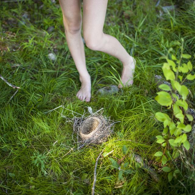 , 'The Bird's Nest,' , photo-eye Gallery