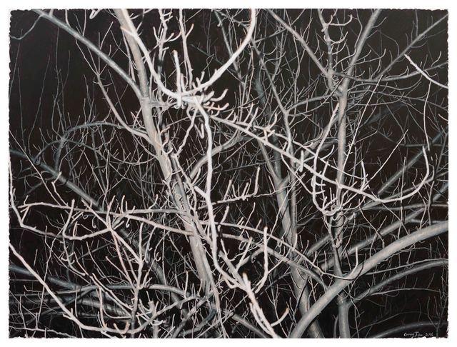 , 'Look at this Grey Tree #12,' 2016, Boers-Li Gallery