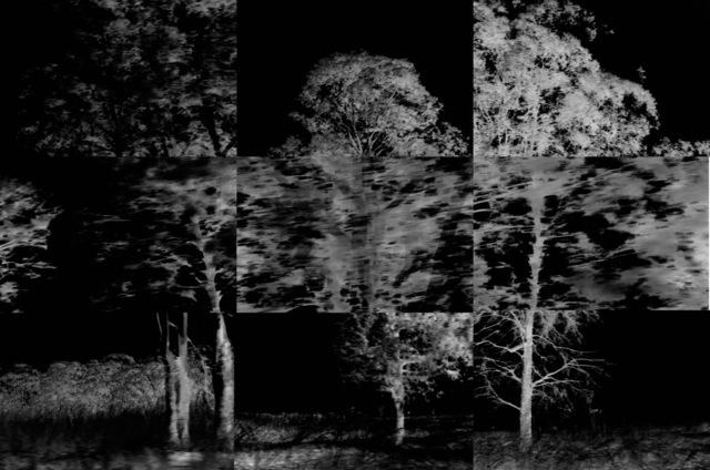 , 'Restless Landscape #3,' 2017, Goodman Gallery