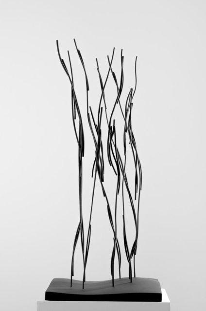 , 'Sarmenti,' 2003, Galerie Frey