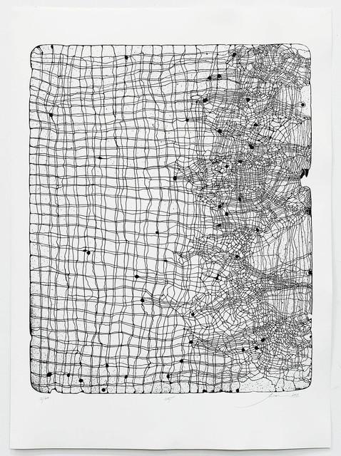 , 'Net ,' 2011, Jonathan Smart Gallery
