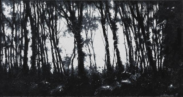 , 'Peter's Dark Forest 2,' 2015, 10 Chancery Lane Gallery