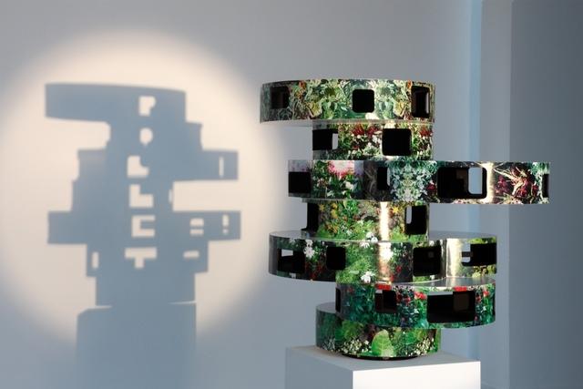 , 'Untitled (Poulet,' 2011, Museum Dhondt-Dhaenens