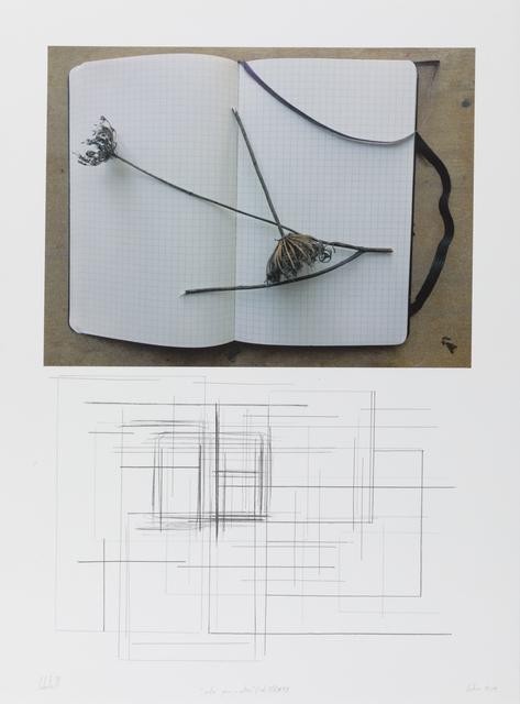 """, '""""notas para o outono"""" (col. I/V) #4/8,' 2018, Galeria Miguel Nabinho"""