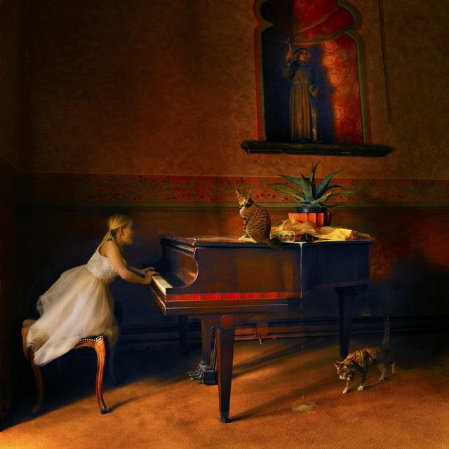 , 'Grimalkin's Opus ,' 2012, photo-eye Gallery