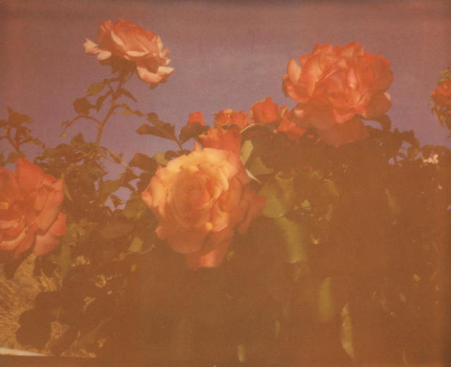 Stefanie Schneider, 'Once in a Blue Moon (The Girl behind the White Picket Fence)', 2013, Photography, Analog C-Print, hand-printed by the artist on Fuji Crystal Archive Paper, based on a Polaroid, mounted on a Wooden box with matte UV-Protection, Instantdreams