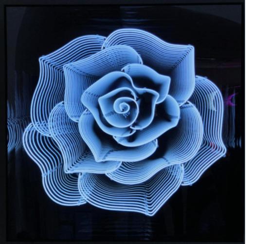 , 'Camelia Rose (White),' 2019, MK Art Invest Group