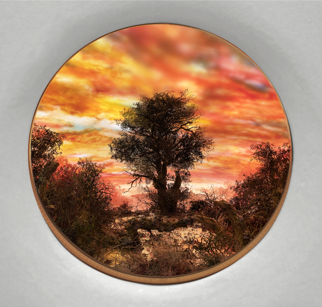 Patrick Jacobs, 'Tree with Red Moonlit Sky (Diorama viewed through 7.5 inch window)', 2020, Sculpture, Styrene, clay, paper, foam, wood, acrylic, steel, lighting, BK7 glass, Pierogi