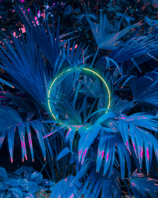 , 'Photoradiation,' 2020, ArtStar