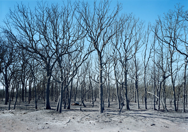 , 'Wildfire, Carbon, Texas, 2006,' 2006, Fort Worth Contemporary Arts
