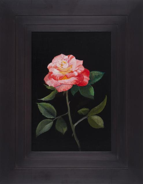 Michael Gregory, 'Untitled (Rose)', 2015, Nancy Hoffman Gallery