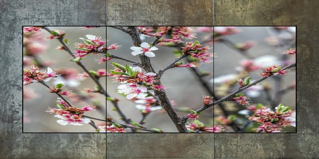 , 'Plum Blossoms,' 2016, Bitfactory Gallery
