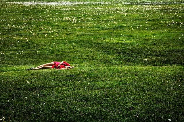 David Drebin, 'Field Of Dreams', 2012, Isabella Garrucho Fine Art