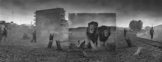 , 'Railway Line with Lion Brothers,' 2015, Edwynn Houk Gallery