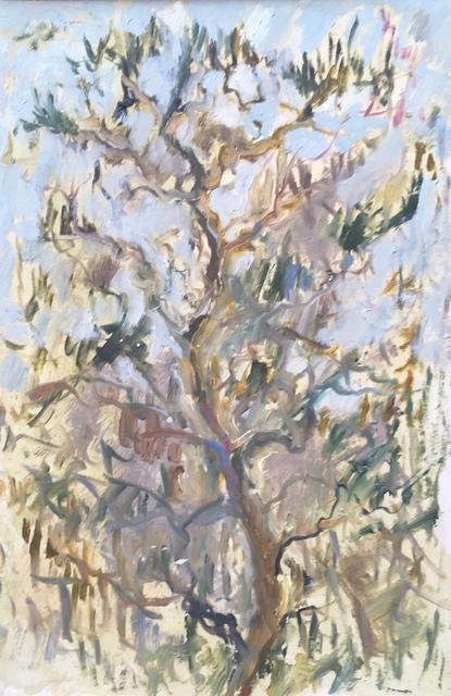 , 'Tree in Kyoto,' 2017, Robert Eagle Fine Art