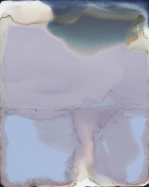 Saul Robbins, 'Chemical Peel (185173)', 2017, Kourosh Mahboubian Fine Art