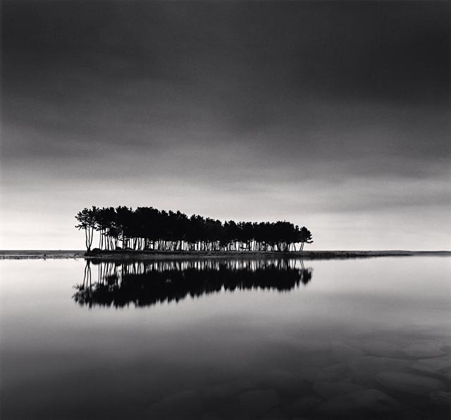 Michael Kenna, 'Pine Trees, Study I, Wolcheon, Gangwando, South Korea', 2007, Weston Gallery